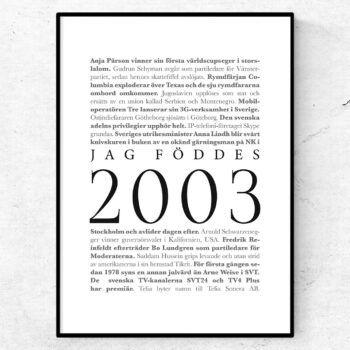 årtalsposter 2003 poster