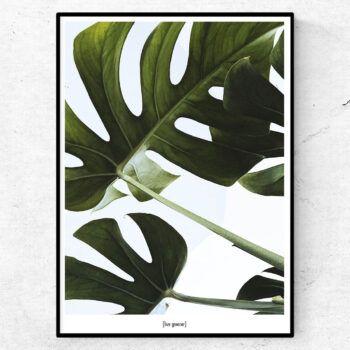 live greener poster