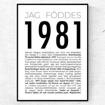 1981 modern poster