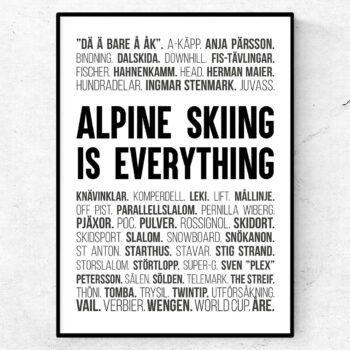 alpin slalom poster tavla skidåkning present