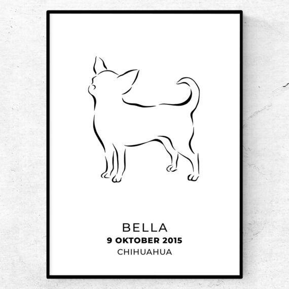 Chihuahua poster med tryck namn tavla
