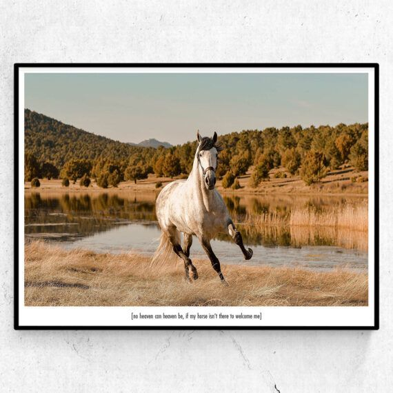 no heaven can heaven be, if my horse isn't there to welcome me poster tavla häst