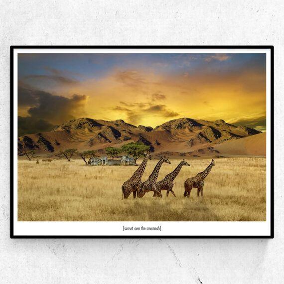 Sunset over the savannah poster giraffer