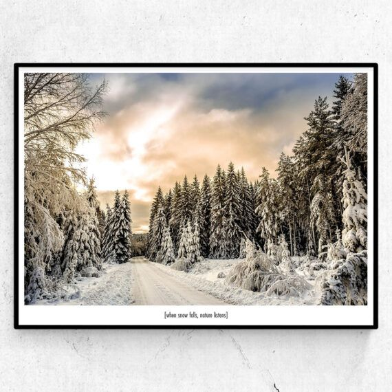 When snow falls, nature listens poster